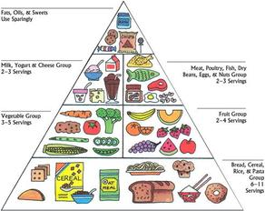 The Challenge Was One Full Day Of Healthy Balanced Food From Pyramid Breakfast Lunch And Dinner As Well Morning Afternoon Tea Consistent